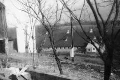 Crystal Springs Farm