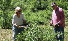 Nancy Gable and Dick Kellner - maintenance in Mill Pond Park