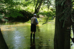 Fishing in Mill Pond Park