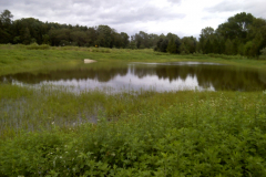 Mill Pond Park after Irene 2011