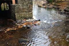 The Mill - Arch Repair